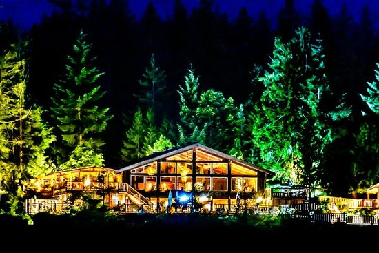 West Coast Wilderness Lodge : night  time and stars