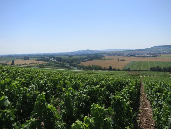 Holiday Inn Reims Centre: On the Champagne trail