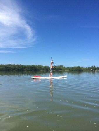 Tigertail Beach Kayak and Paddleboard Rentals