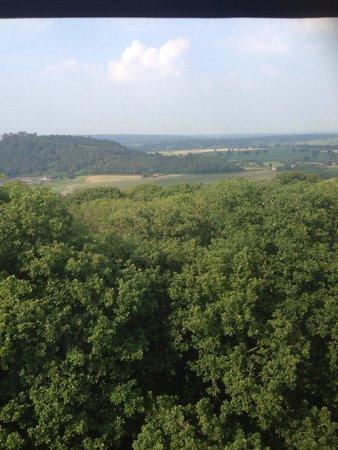 Peckforton Castle: View from window