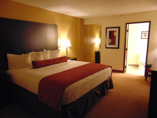 BEST WESTERN PLUS Denver Tech Center Hotel: bedroom