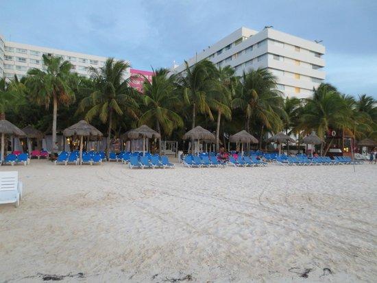 Grand Oasis Palm : Beach