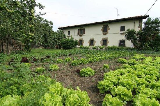 Casa Rural Jesuskoa: La huerta