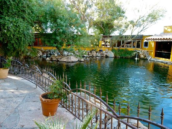el encanto mexican patio cafe pond - Patio Cafe
