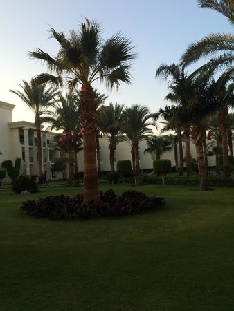 Hilton Hurghada Resort : The gardeners does a really good work! We miss them.