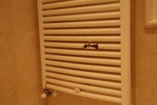 Hotel Palazzo Decumani: Il est temps de changer le sèche serviette !
