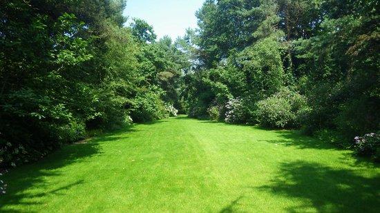 2 photo de le jardin de bellevue beaumont le hareng for Beaumont le hareng jardin de bellevue