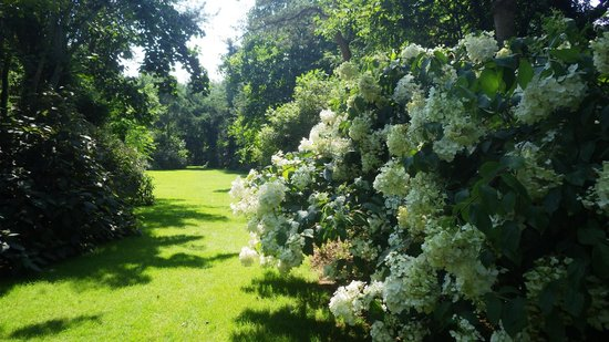 Le Jardin de Bellevue