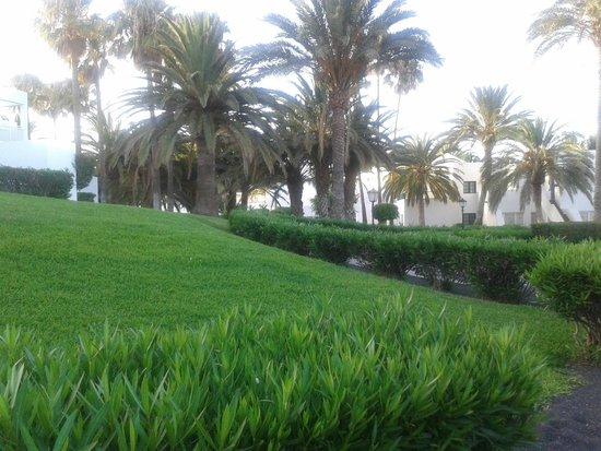 ClubHotel Riu Paraiso Lanzarote Resort: ogród