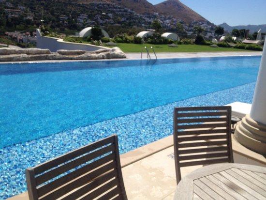 Sianji Wellbeing Resort : Villa pool view