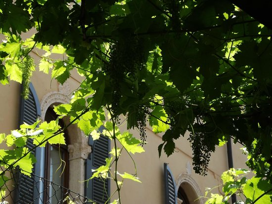 Bar Caffetteria Al Duomo: Vista interna do Caffé