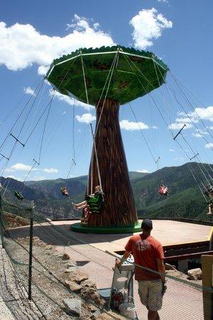 Glenwood Caverns Adventure Park : swing