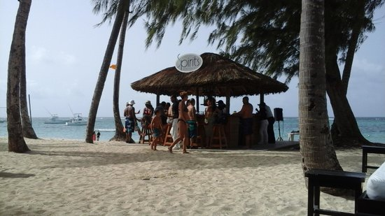 Presidential Suites - Punta Cana: the beach bar , my favorite spot.