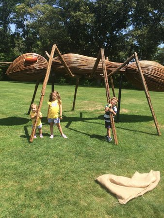 Heritage Museums & Gardens : Playing on the parade field