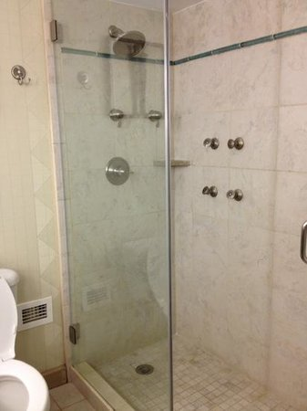 Hilton Charlotte University Place: luxurious shower!