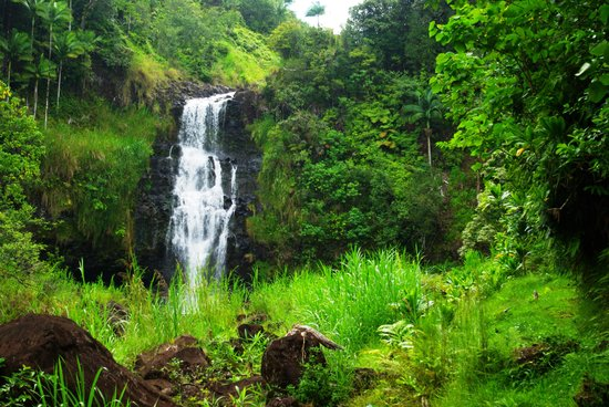 The Inn at Kulaniapia Falls: waterfalls