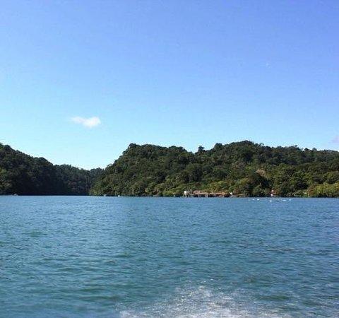 Go With Gus Tours : Entrada a Rio Dulce River (Rio)
