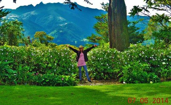 Hacienda La Alegria : I never want to leave!
