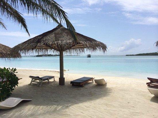 Cinnamon Dhonveli Maldives : Lagune