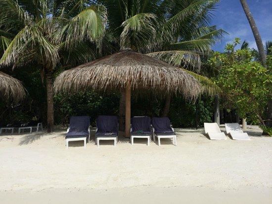 Cinnamon Dhonveli Maldives : Lagune beach