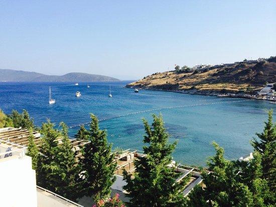Hotel Mavi Kumsal: View from 312