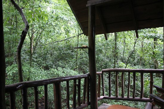 Tree Houses Hotel Costa Rica: Porch