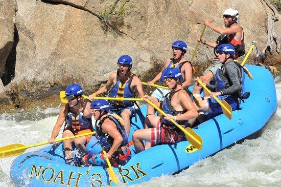 Noah's Ark Colorado Rafting & Aerial Adventure Park: Zoom Flume