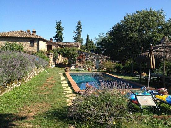 Agriturismo Novelleto: Veduta dalla piscina