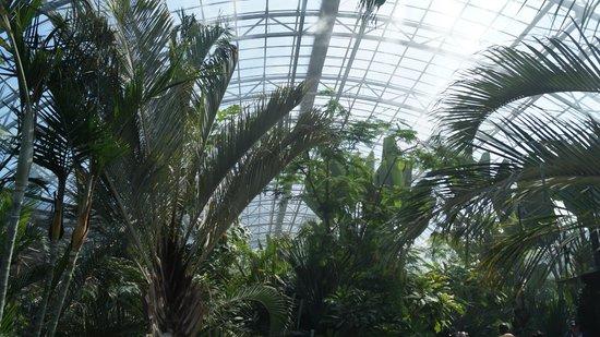 Parc Zoologique de Paris: serre tropicale