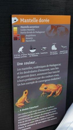 Parc Zoologique de Paris: panneau explicatif