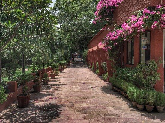 Hotel Sheela: Outdoor area