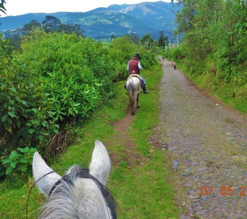 Hacienda La Alegria: out on a ride