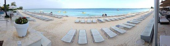 Grand Cayman Marriott Beach Resort : beach