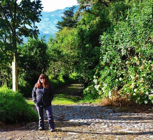 Hacienda La Alegria: pretty grounds!