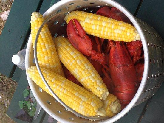 Downeast Coastal Cruises: Fresh lobster
