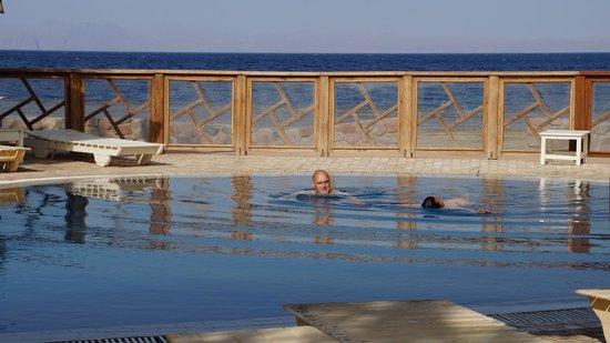 Nesima Resort and Dive Center : la piscine vue sur la mer