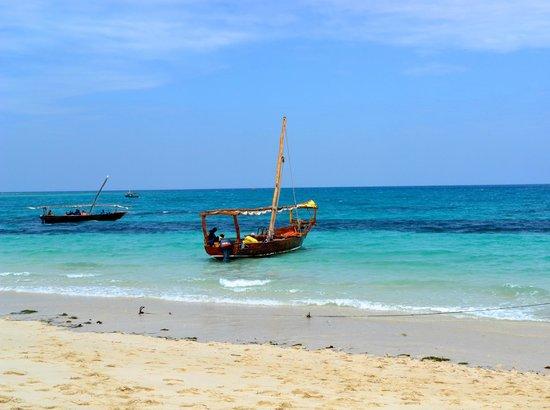 Waridi Beach Resort & Spa: Mare