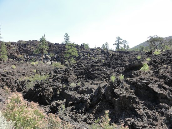 Sunset Crater Volcano National Monument: Sunset Crater lava flow