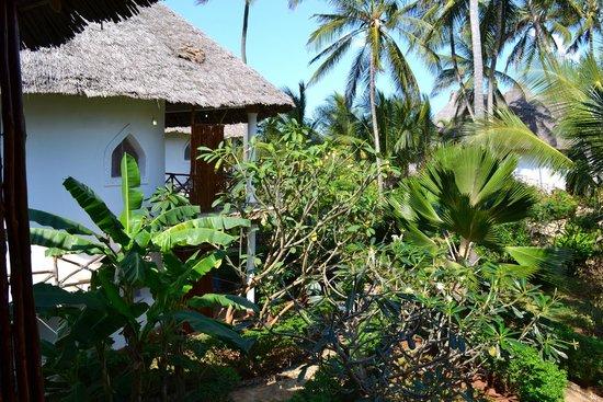 Waridi Beach Resort & Spa : Dal Bungalow
