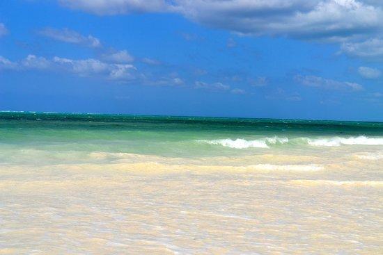 Waridi Beach Resort & Spa : Mare
