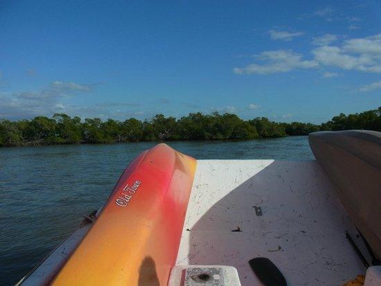 Tour The Glades - Private Wildlife Tours: Mit dem Boot zurück
