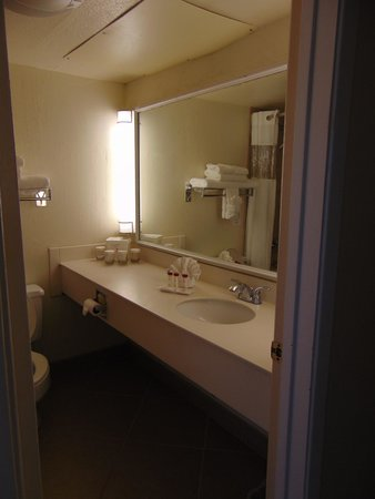 Ramada Las Cruces Hotel and Conference Center : bathroom
