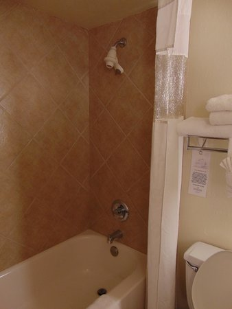 Ramada Las Cruces Hotel and Conference Center : shower