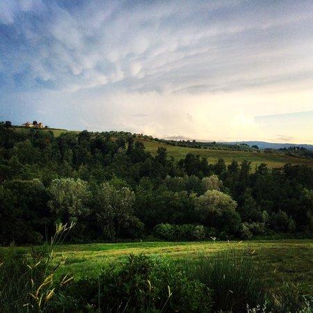 Il Grande Prato : View from the garden