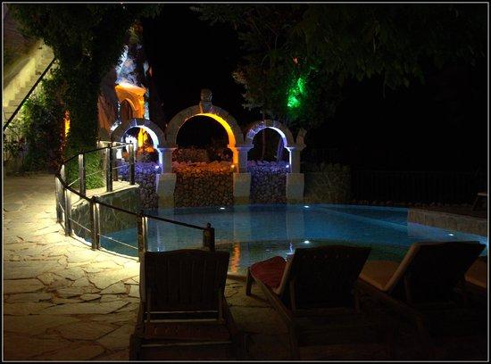 Gamirasu Cave Hotel: pool