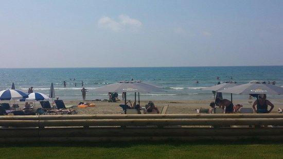 smartline Margarita Hotel: View from republic beach bar