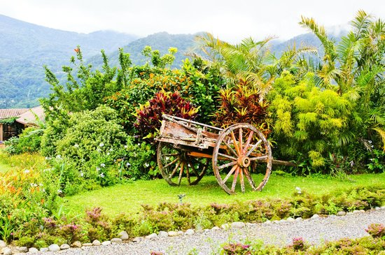 Los Establos Boutique Hotel: The wagon on the grounds