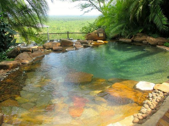 Victoria Falls Safari Lodge: Pool, view of the wildlife