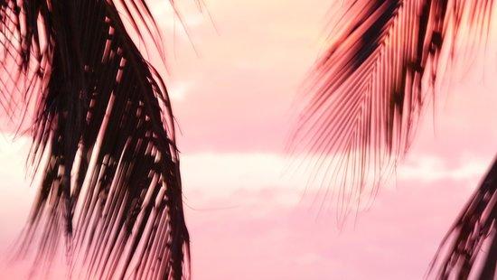 Zuana Beach Resort: atardecer en el hotel
