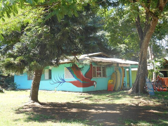 Clear River Sports & Adventure: Clear River Hostel